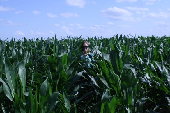 Knee High by the 7th of July
