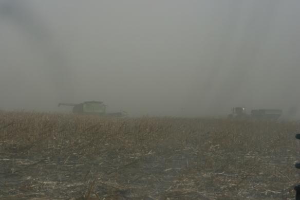 Dust Blizzard