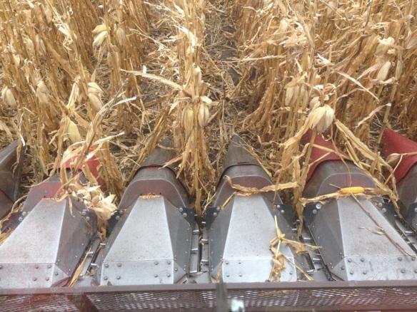 Combine Corn Header