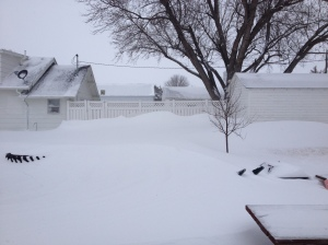 Winter storm Kayla