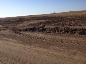 field driveway