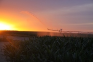 end gun on the pivot at sunset