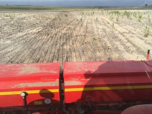 2016 wheat drilling