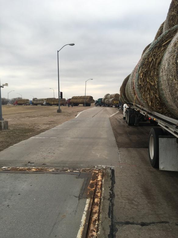 Hay convoy #NebraskaStrong